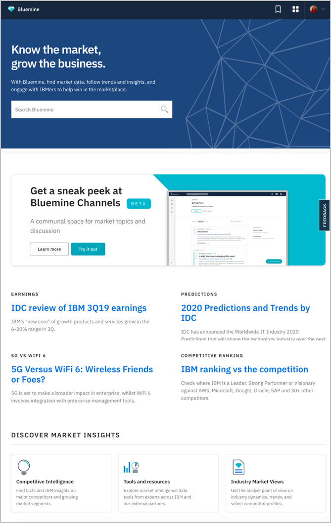 IBM BLUEMINE INTRANET